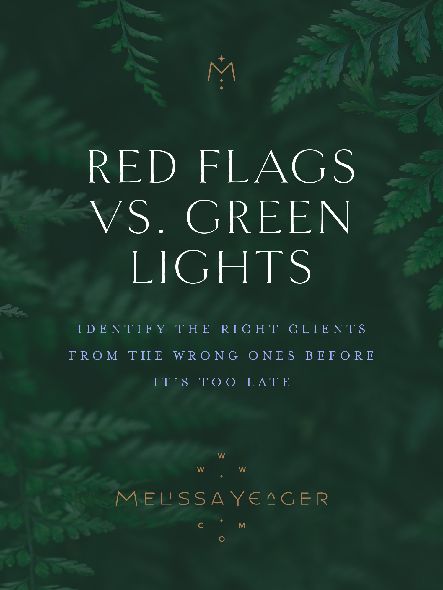 Red Flags vs. Green Lights - key tips for identifying the right clients from the wrong clients before it's too late