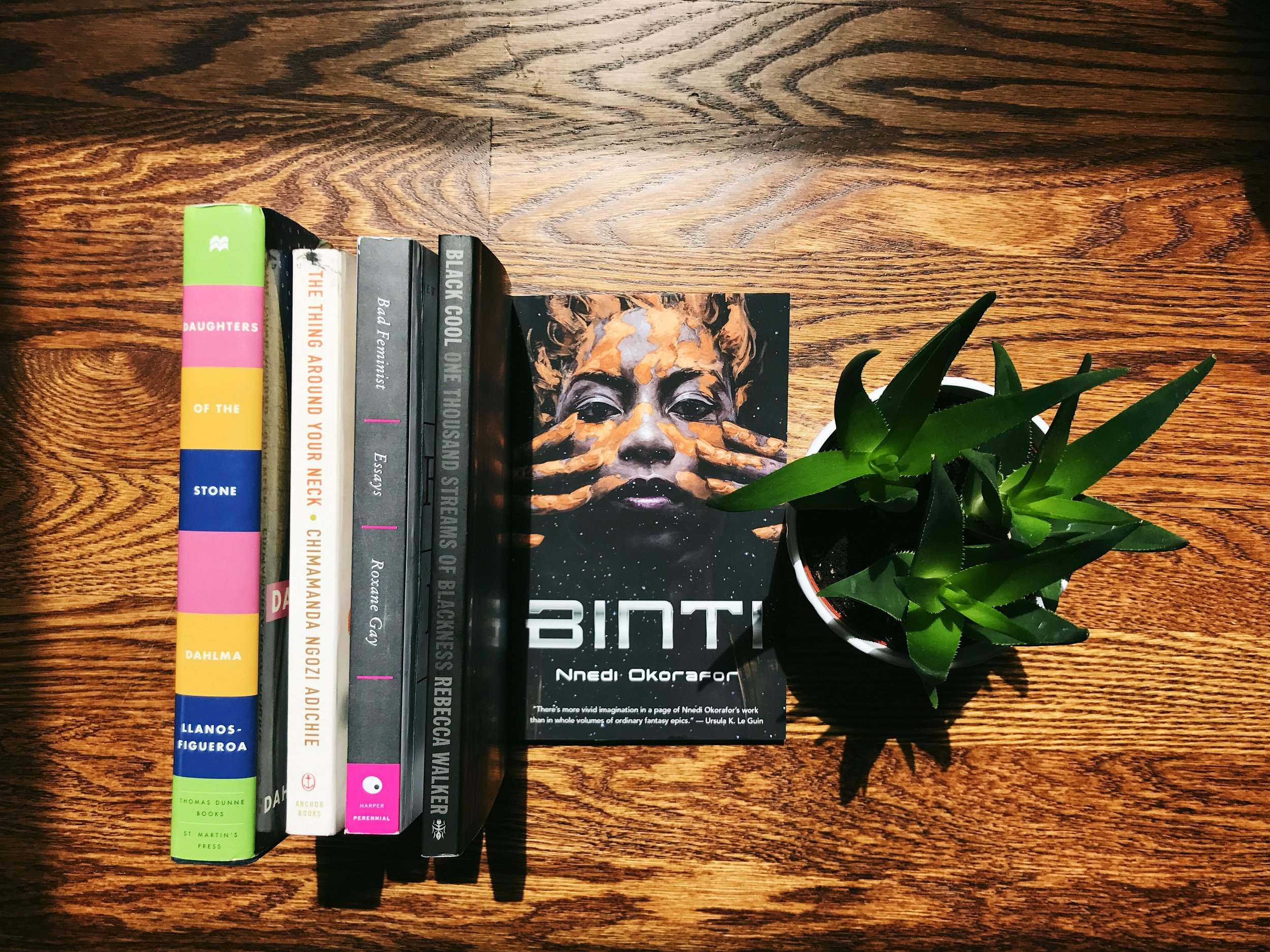 books on wooden floor with green plant