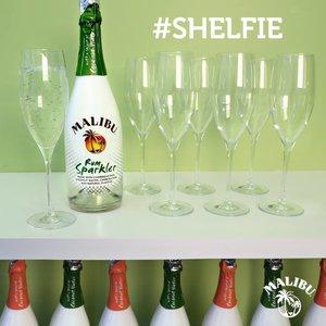 Malibu Shelfie.jpg