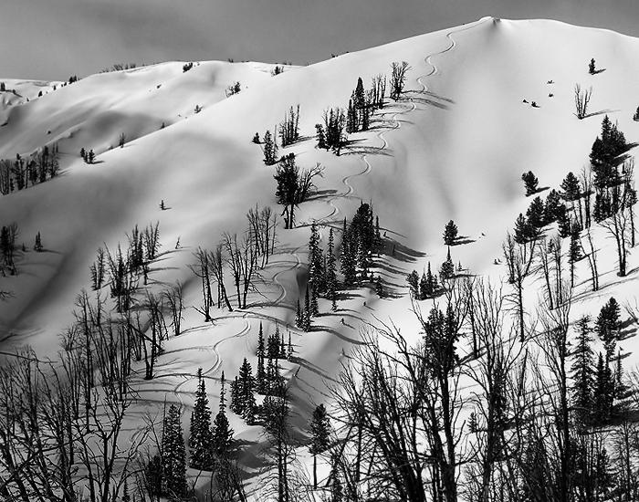 yellowstone_ski_tours_homepage1.jpg
