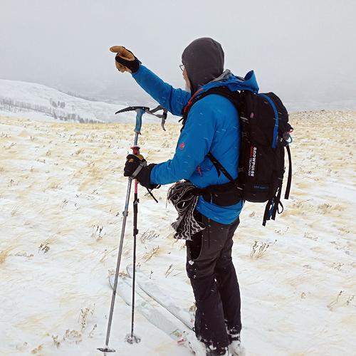 Along the windswept, Specimen Ridge.