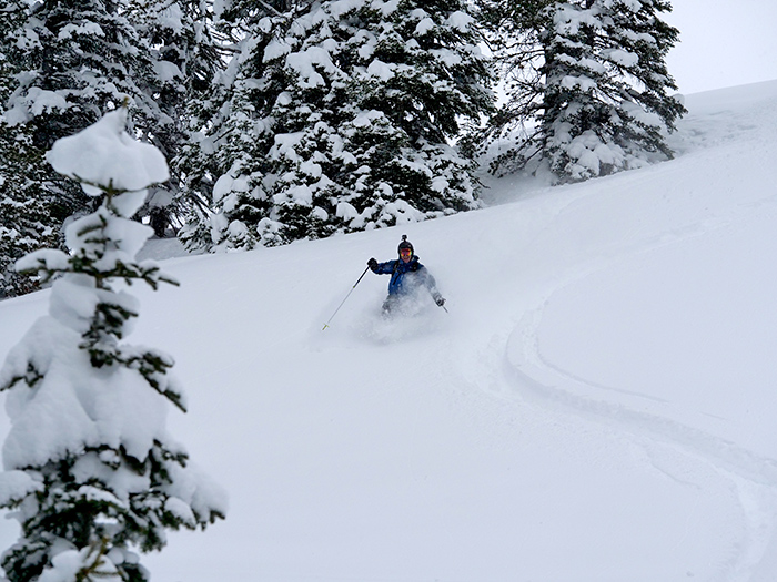 yellowstone_powder_skiing.jpg