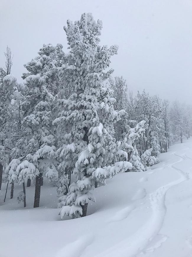 may22_ski.jpg