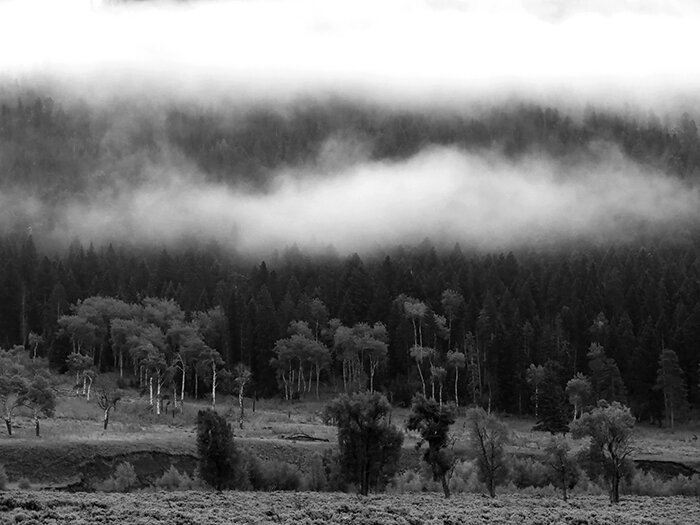 autumn_low_cloud.jpg
