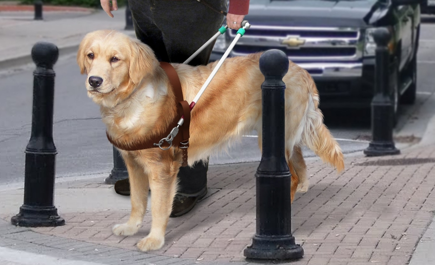 INDUSTRIAL DESIGN - Guide dog harness re-designDolly re-designPlayground equipment for education