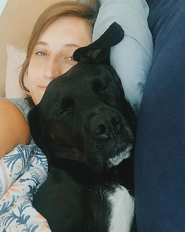 Back home with this little monster 🏡🐶 A weekend at doggy daycare = major cuddle times. I'm lovvvinnnn' it. 😴🥰