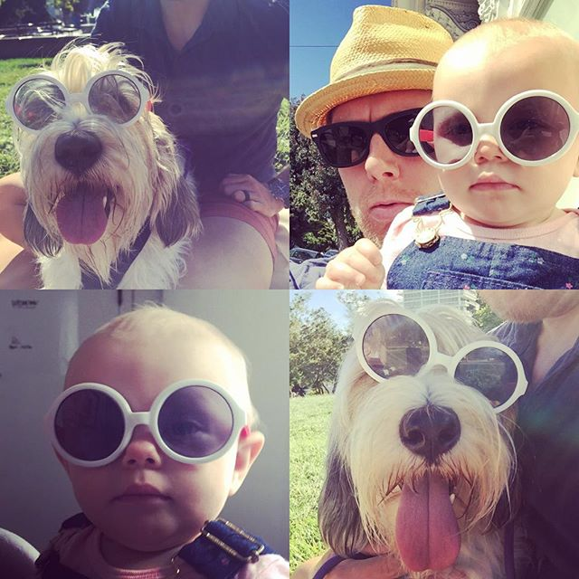 Who wore it better? Zoë or Charlee? Had a great 1st Father's Day with my beautiful wife, little Charlee and the two pups. #fathersday #sunnies