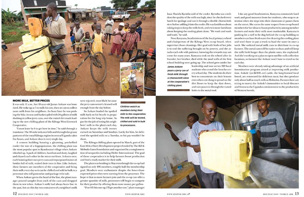 Heifer_Uganda_Holiday_1-2.jpg