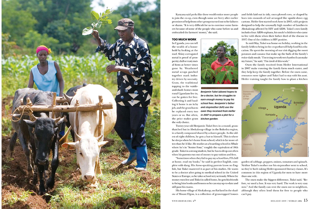 Heifer_Uganda_Holiday_1-3.jpg