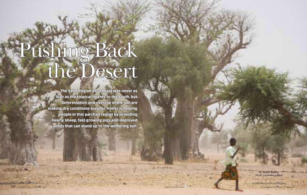 Senegal-1.jpg