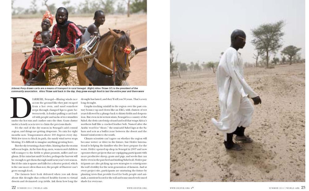 Senegal-2.jpg