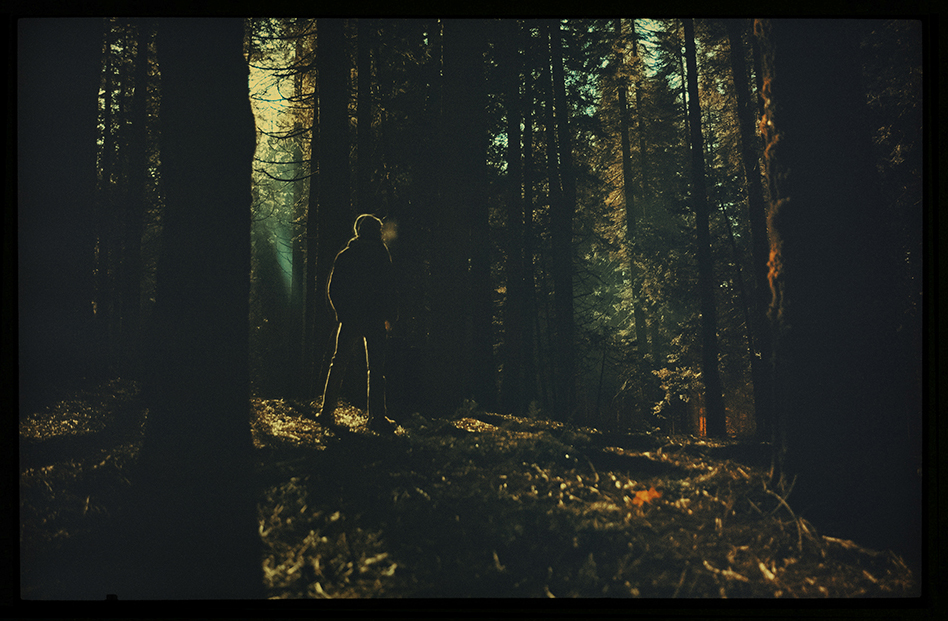 A not-so-long exposure of Dylan in the middle of the night near Yosemite National Park.