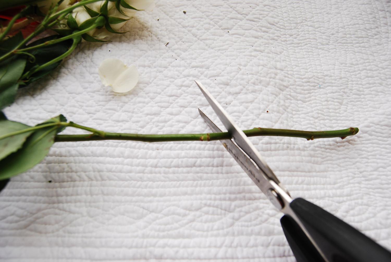 flower_arrangment_4.jpg