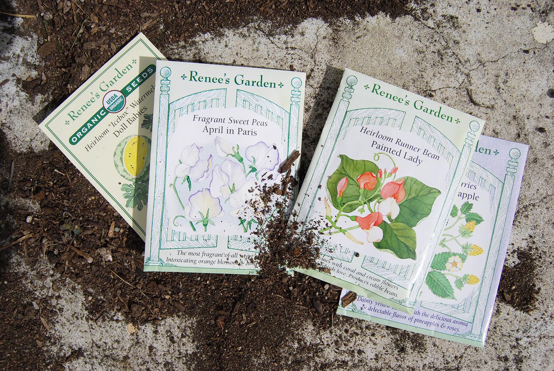 Renee's Garden Seeds:  Painted Lady ,  April In Paris ,  Alpine Strawberries Heirloom Pineapple ,  Watermelon Heirloom Icebox {affiliate links}