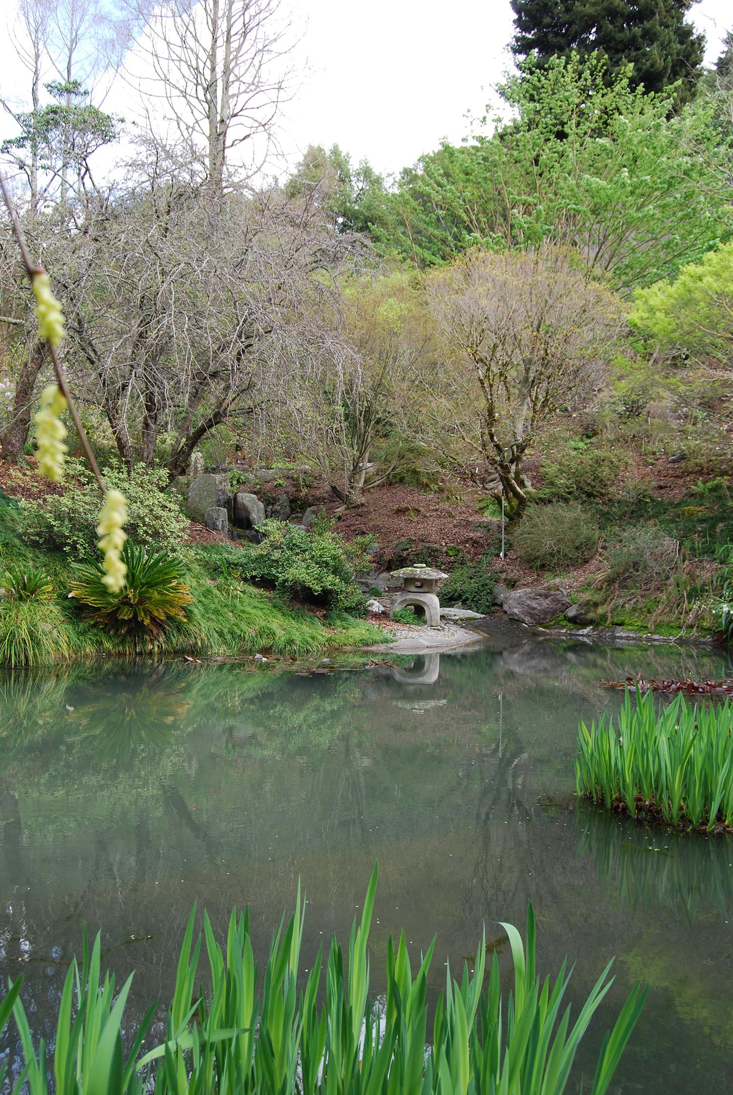 botanic_adventures_15.jpg