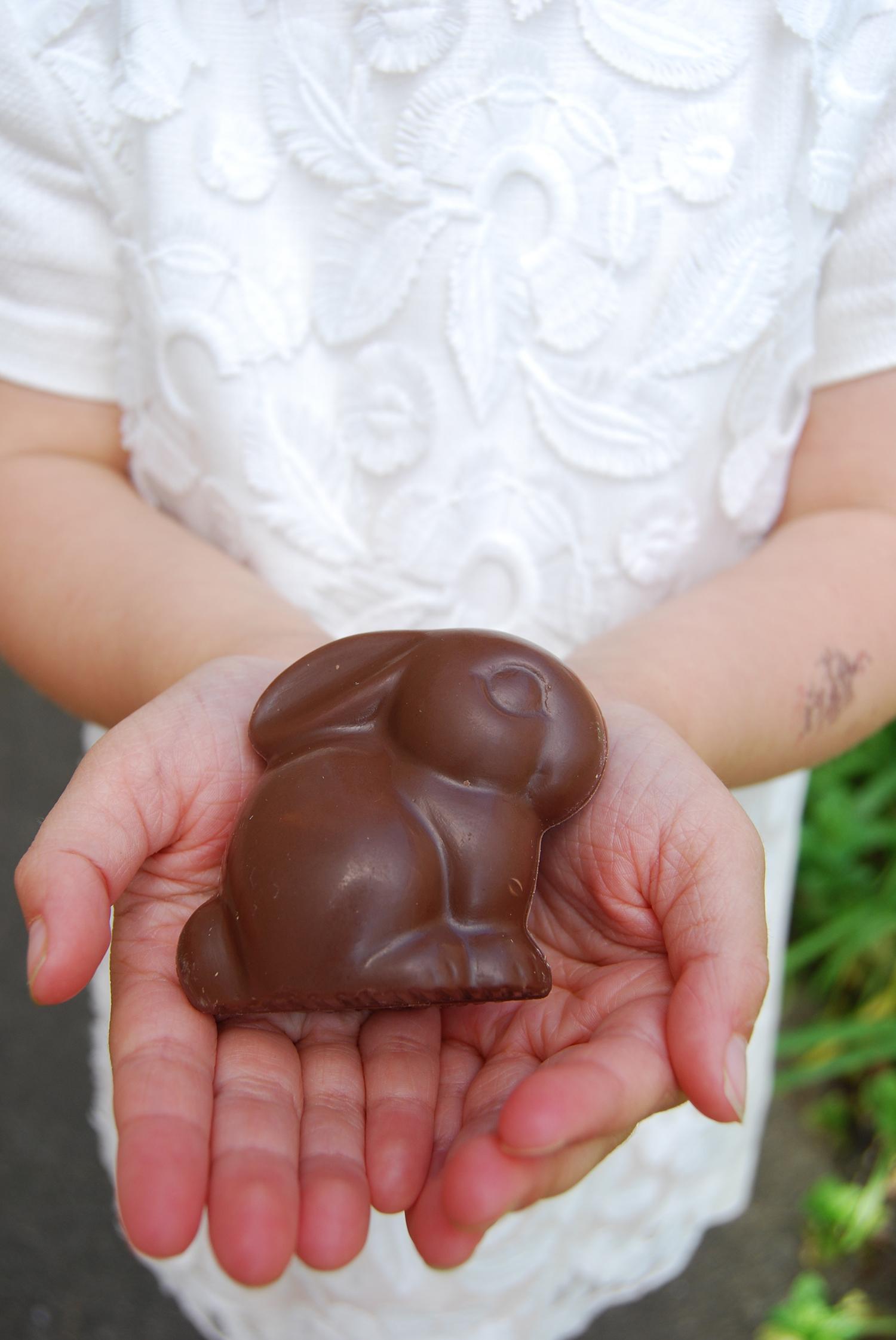 chocolate_bunny.jpg