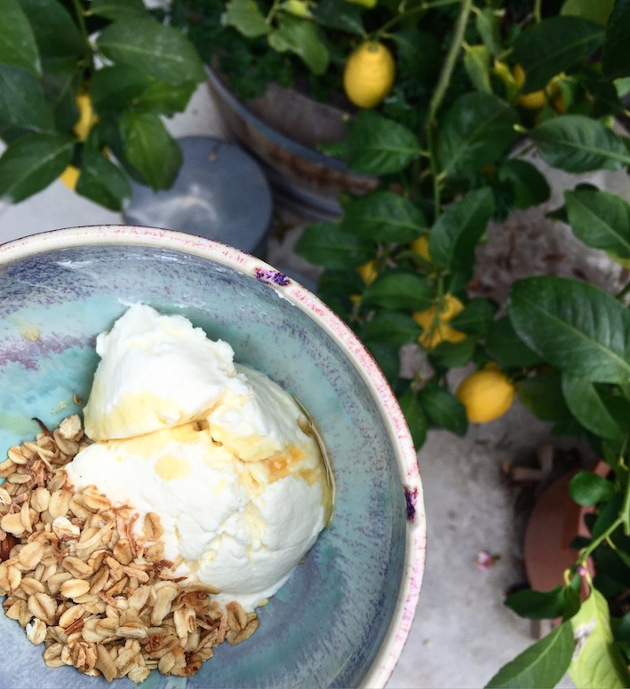 yoghurt-muesli.JPG