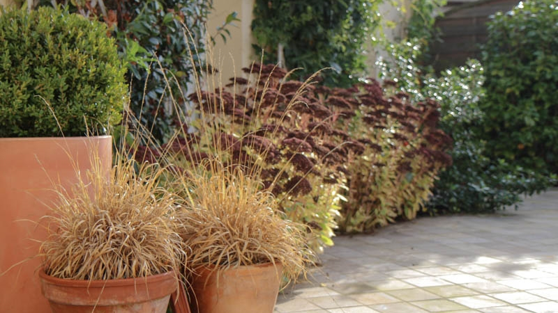 Terrasses et petits espaces