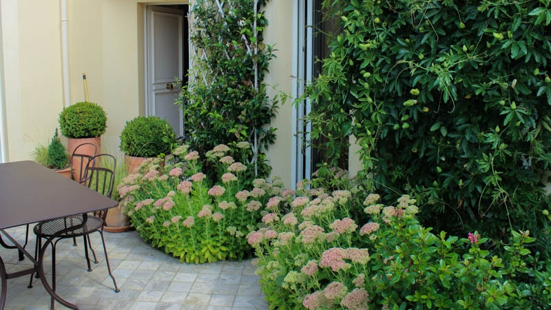 Jardin et entretien