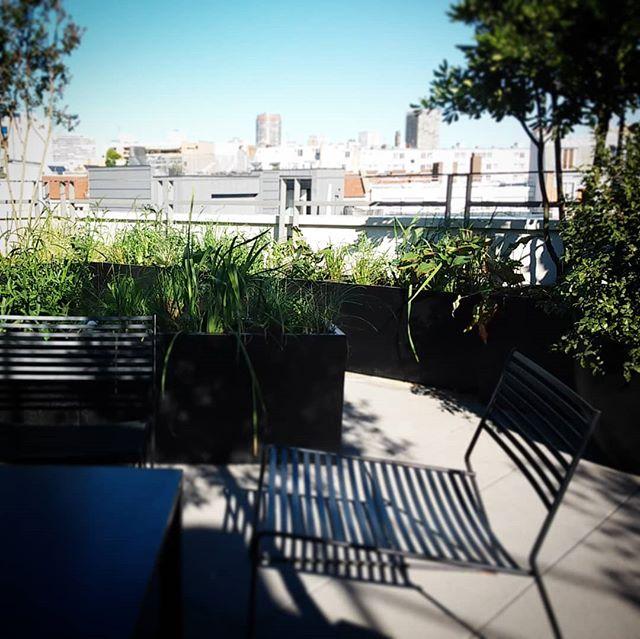 Conseil de paysagiste : dévoiler la vue !  #paysagiste  #ilovemyjob  #skyline  #rooftop  #surlestoitsdeparis  #black