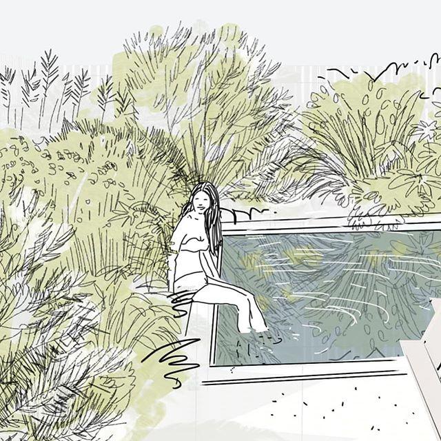 Miroir d'eau.  #plouf  #piscine  #paysagiste  #jardin  #esquisse  #ilovemyjob  #saule