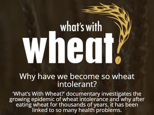whats-with-wheat-icon.jpg