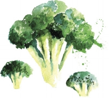 Did you know brassica vegetables, such as broccoli, kale, sprouts or cabbage, are loaded with nutrients witch fight disease?