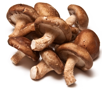 According to the traditional Chinese Medical tradition Shiitake   preserves health, improves stamina and circulation, cures colds and lowers blood cholesterol ( David Moore Org )