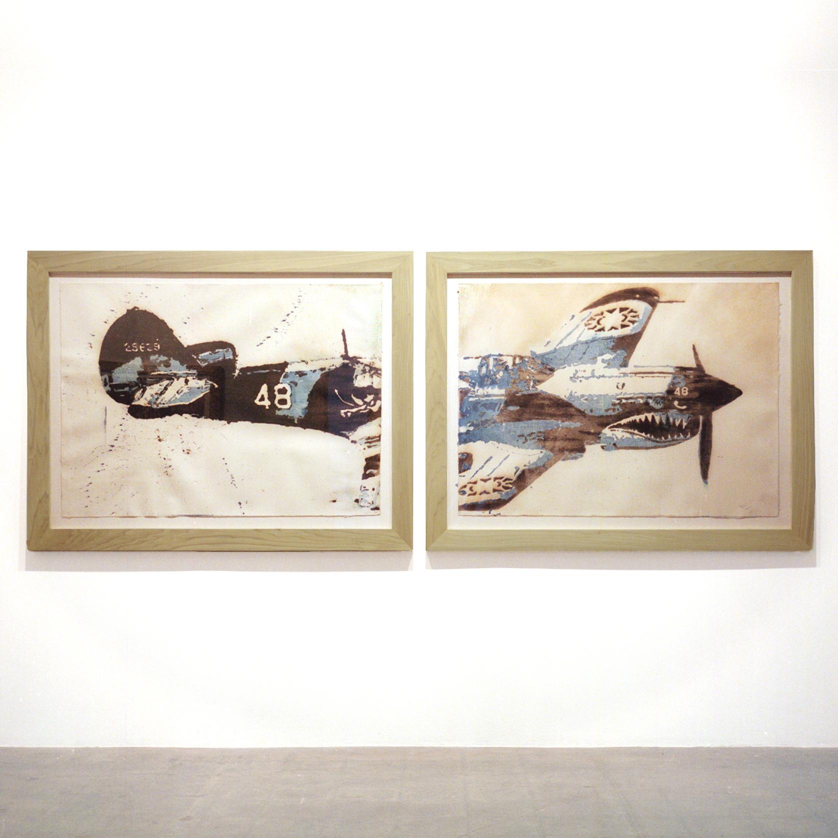"Bradly Brown ""Curtiss P-40"" (2007)"