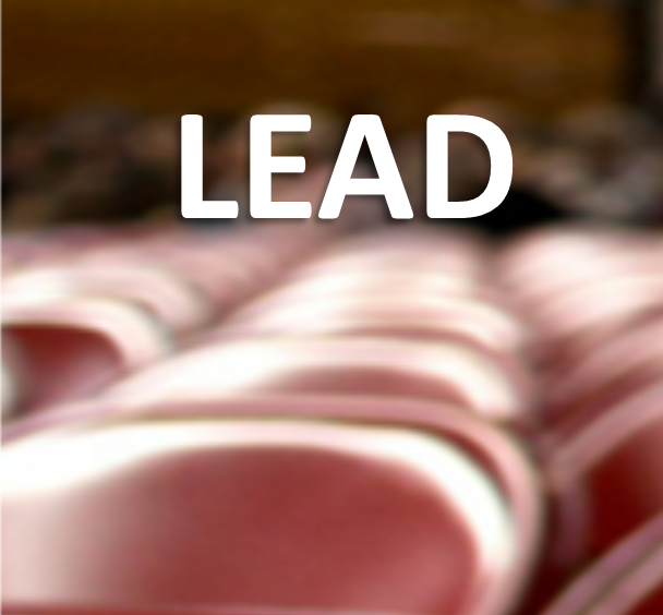 LEAD.png