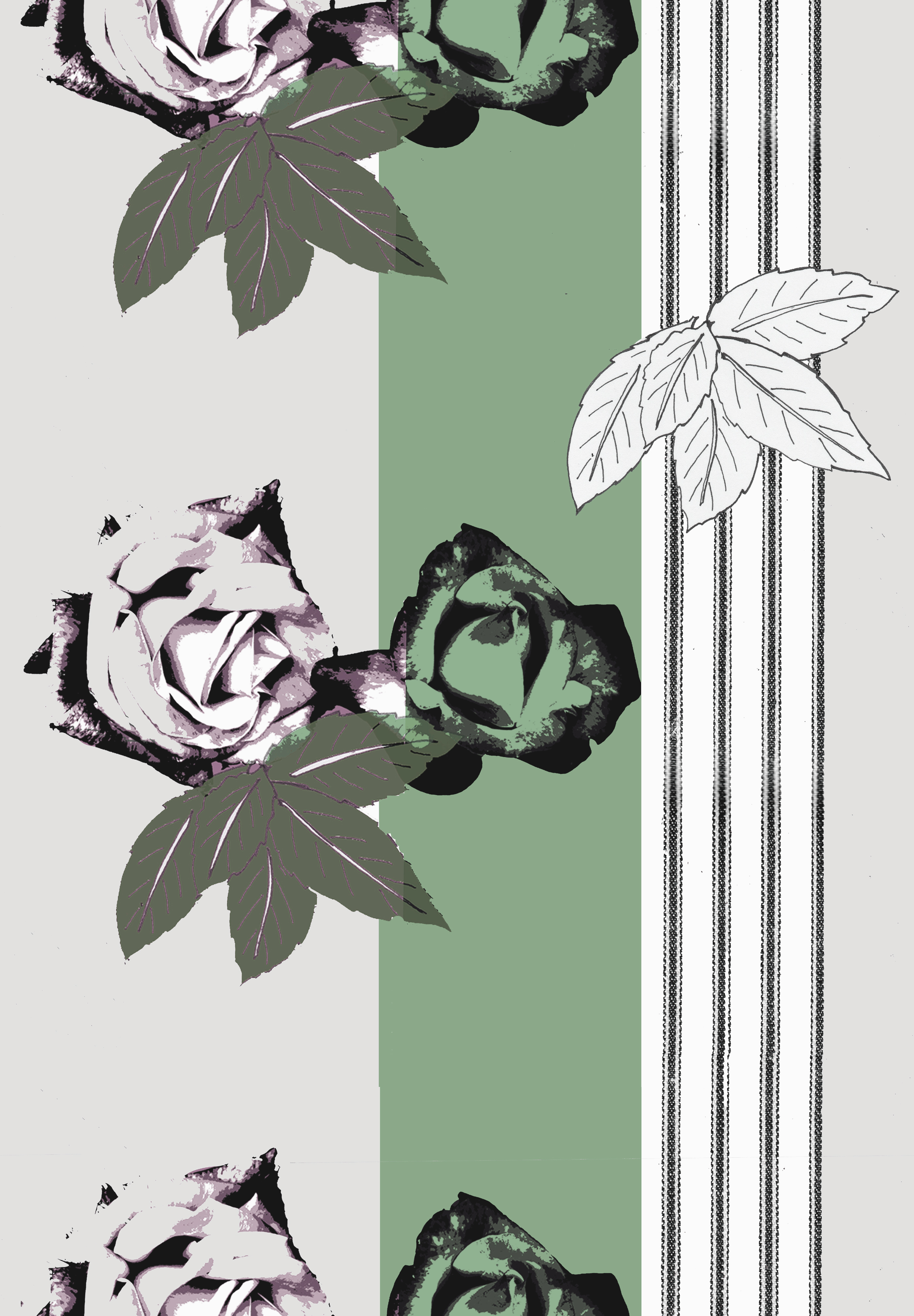 Roses with stripe design green