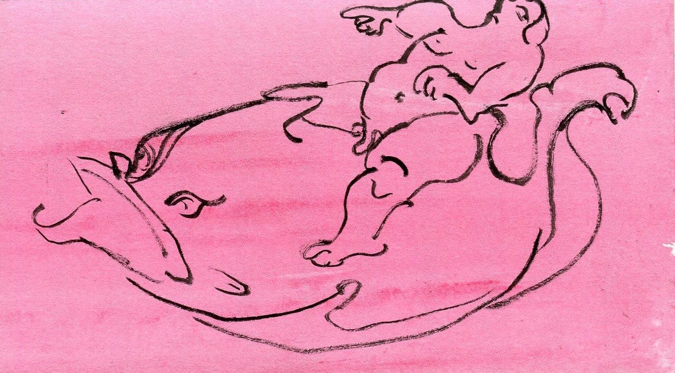 Fat Cupid   Pen on paper  10 x 17.5 cm