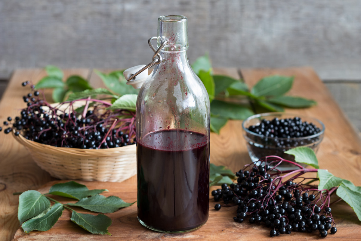 Elderberry syrup for natural wintertime immunity, Chinese medicine keto paleo anti-viral and fighting colds, from health coach and wellness consultant Andrea Rennie of Grow Happy Grow Healthy
