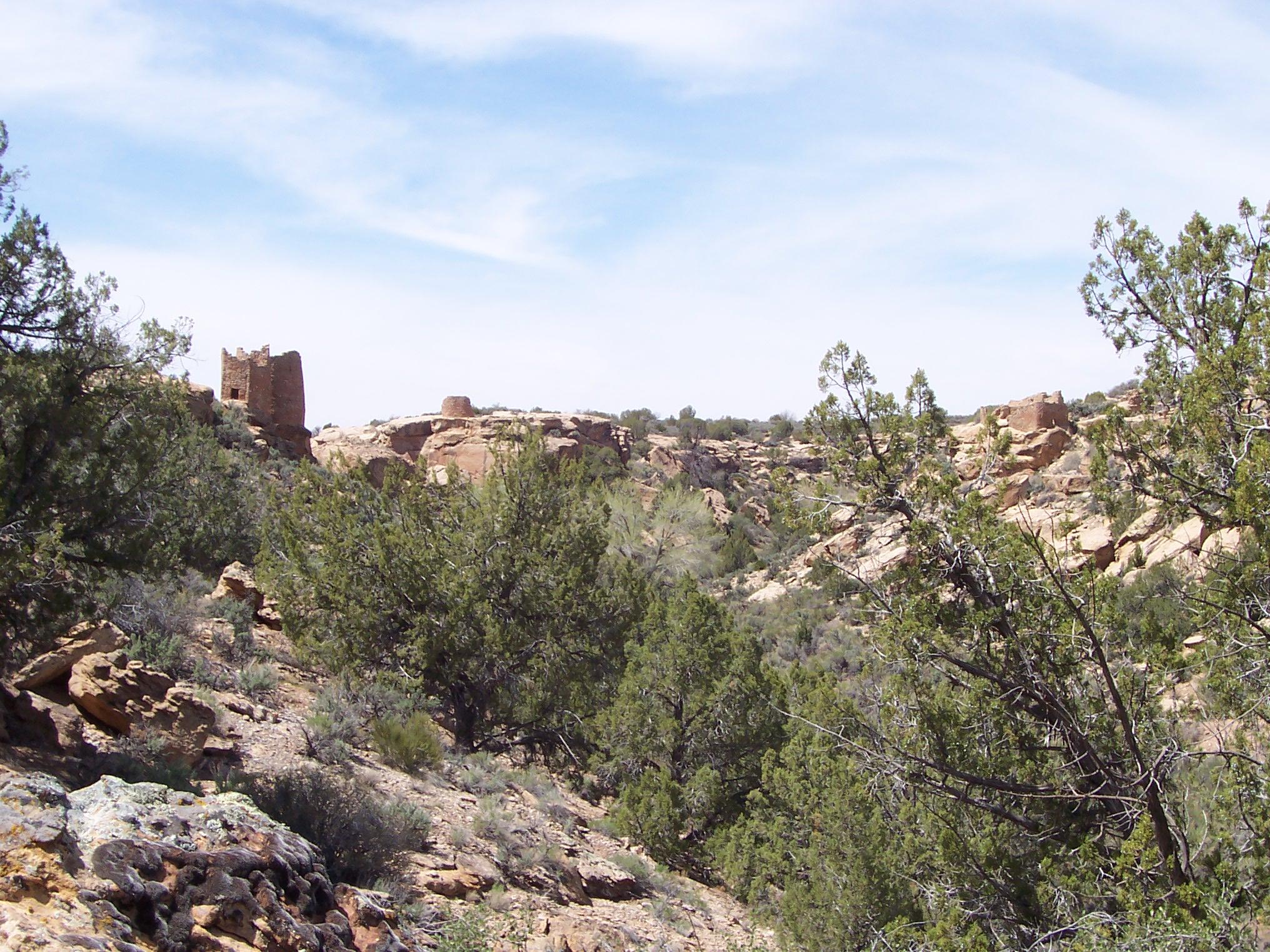 Southwest Ruins April 2010 092