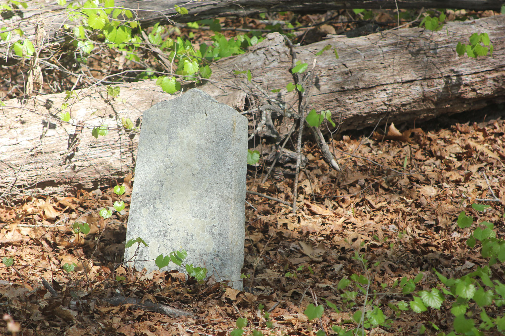 Mystery Grave in the Flat Rock Cemetery