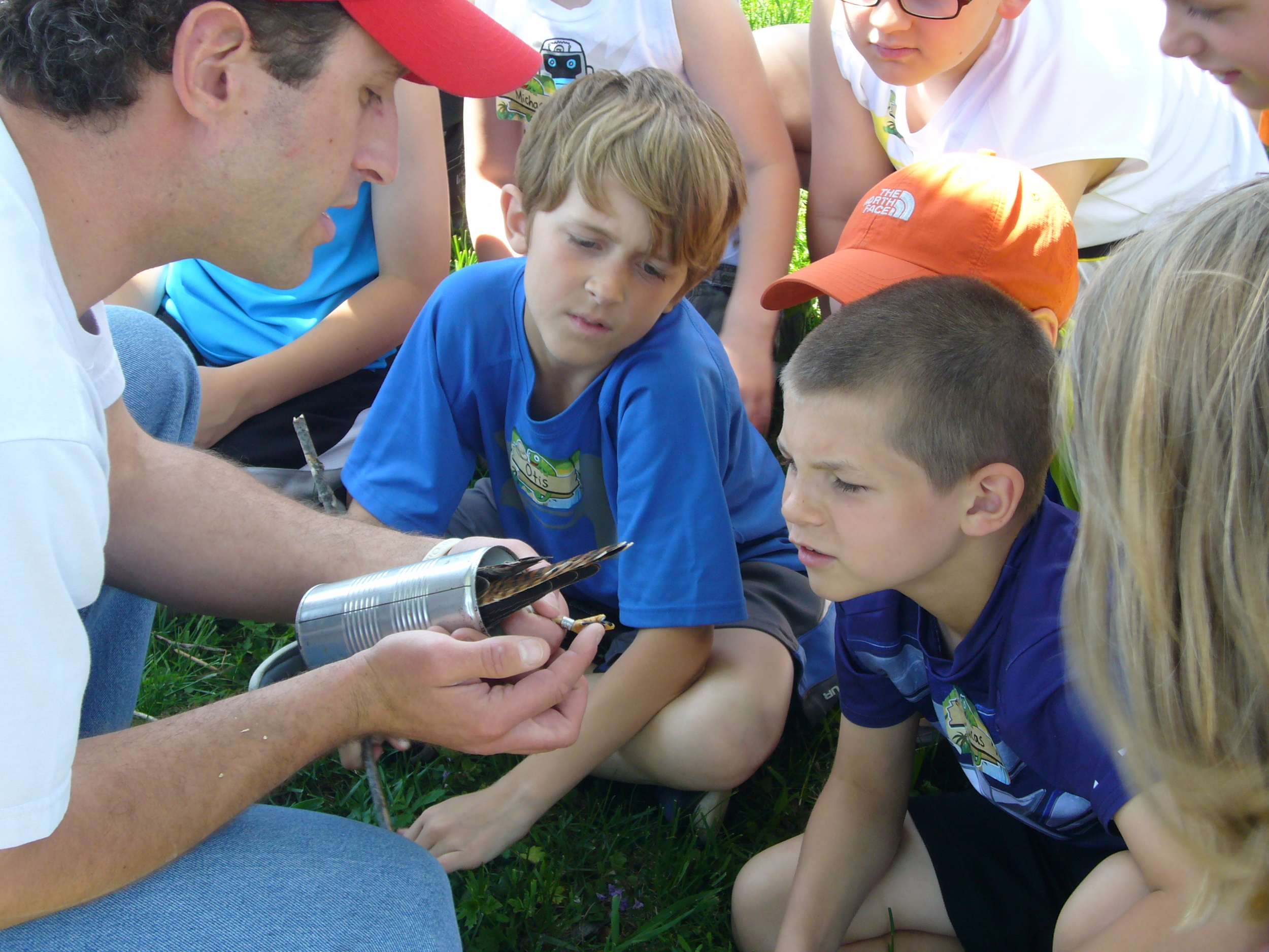 Students get an up-close look at an American kestrel