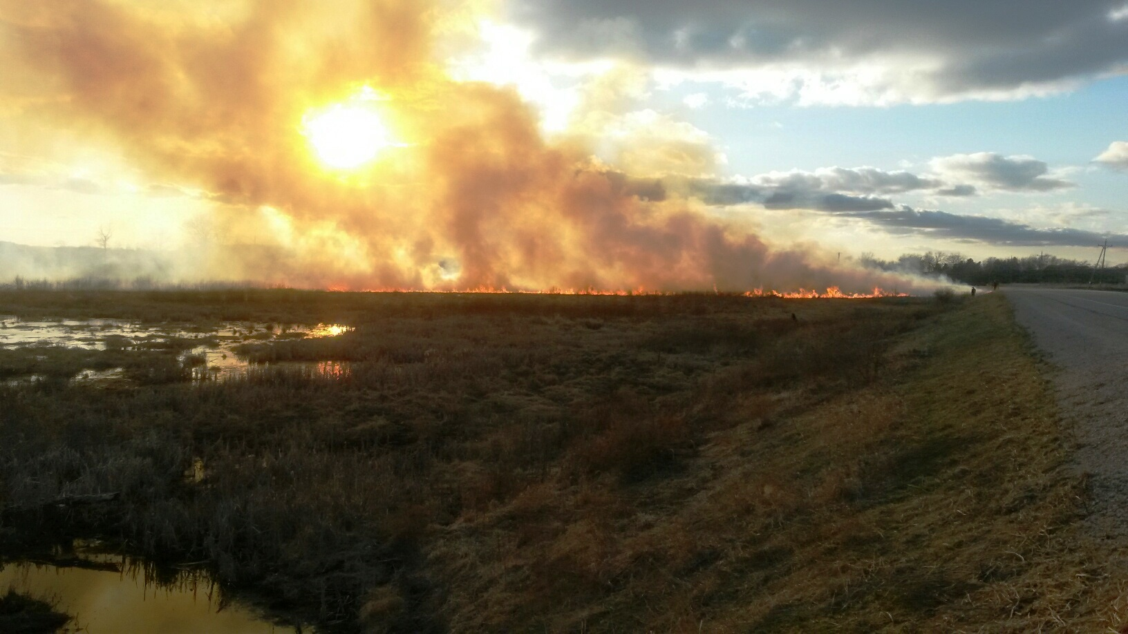 A spring prairie burn revitalizes the landscape