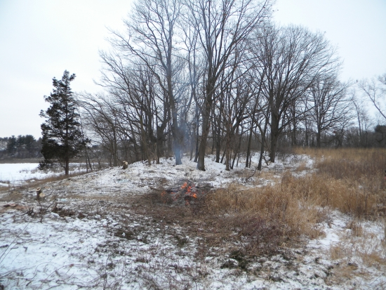 The General still obscured behind the limbs of more invasive woodland trees; yet in the foreground: hope. This woodland restoration will bring savanna back to the General.