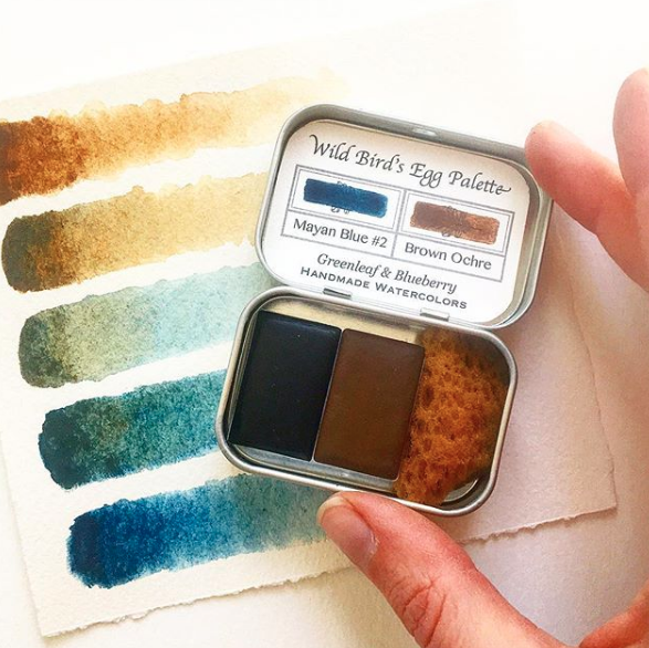 The beautiful pigmentation of bird eggs comes from just two pigments. Photo by  Greenleaf & Blueberry
