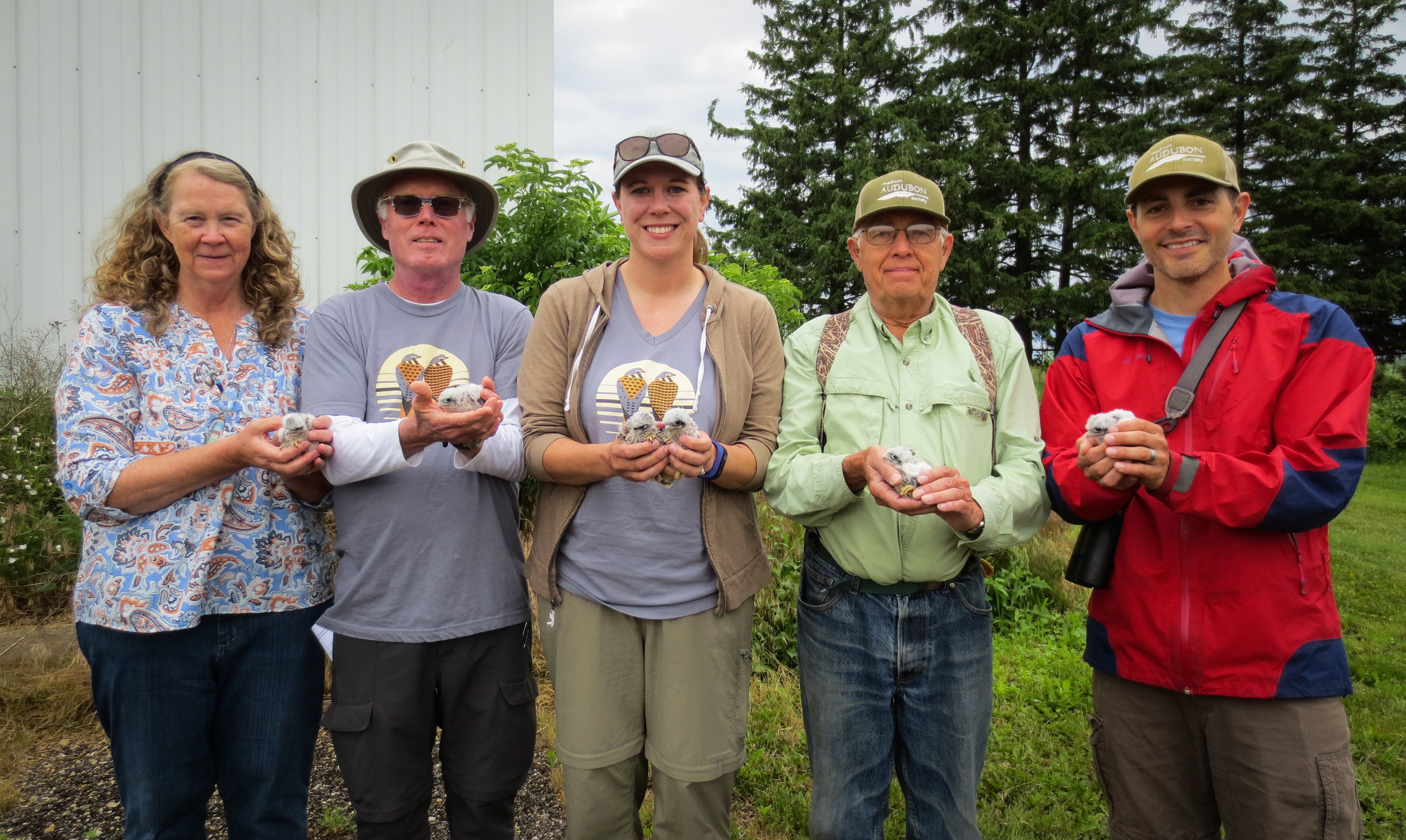 Local kestrel program coordinators (L to R): Janet Eschenbauch, CWKR coordinator and biologist; Brand Smith, MAS volunteer; Amber Eschenbauch, CWKR biologist; Mark Martin, MAS Goose Pond Sanctuary resident co-manager; Matt Reetz, MAS executive director. Photo by Madison Audubon Society. June 15, 2018