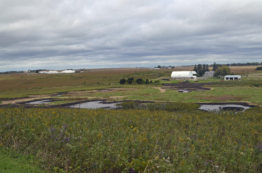 Wetland scrapes filled with water on Friday, September 21st after 2.8 inches of rain. Photo by Mark Martin.
