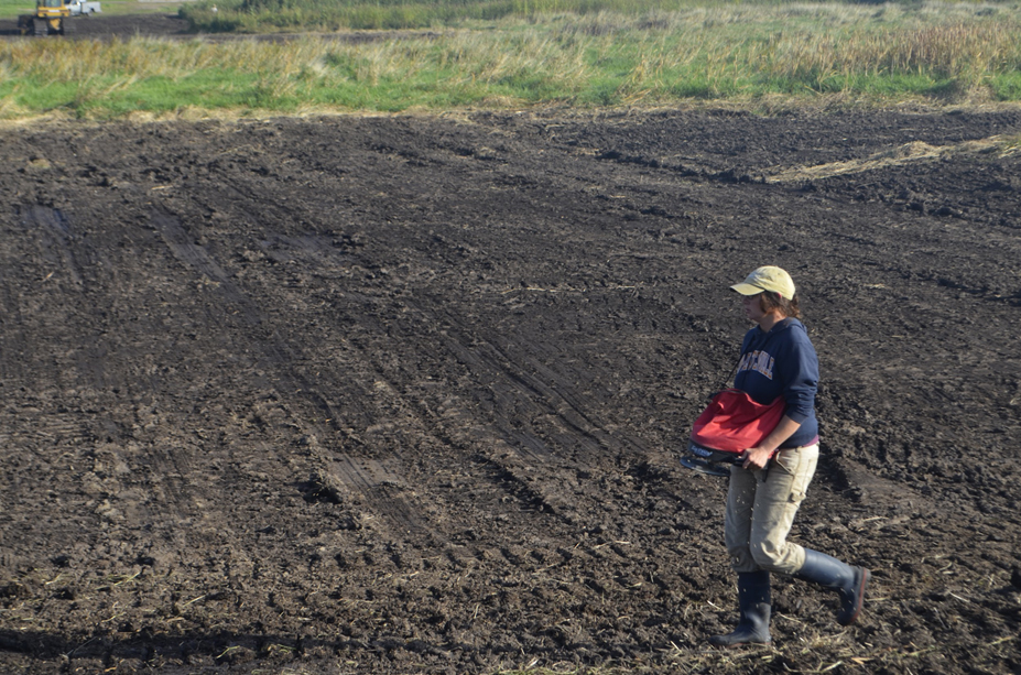 Photo of Jacqueline Komada seeding uplands with fall rye. Photo by Mark Martin.