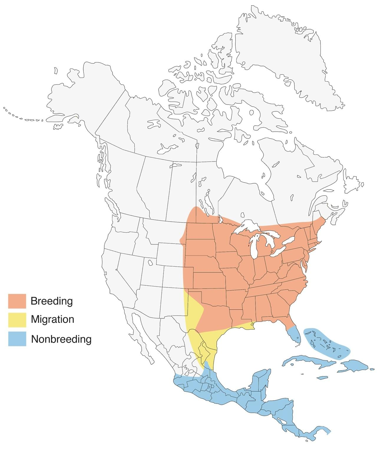 Indigo bunting range map by Cornell Lab of Ornithology