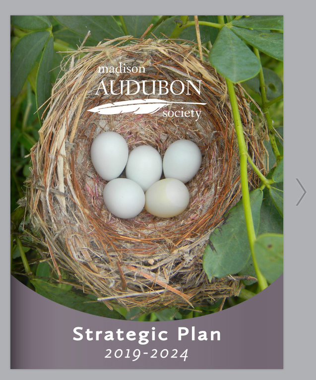Click for a flip format of the public plan