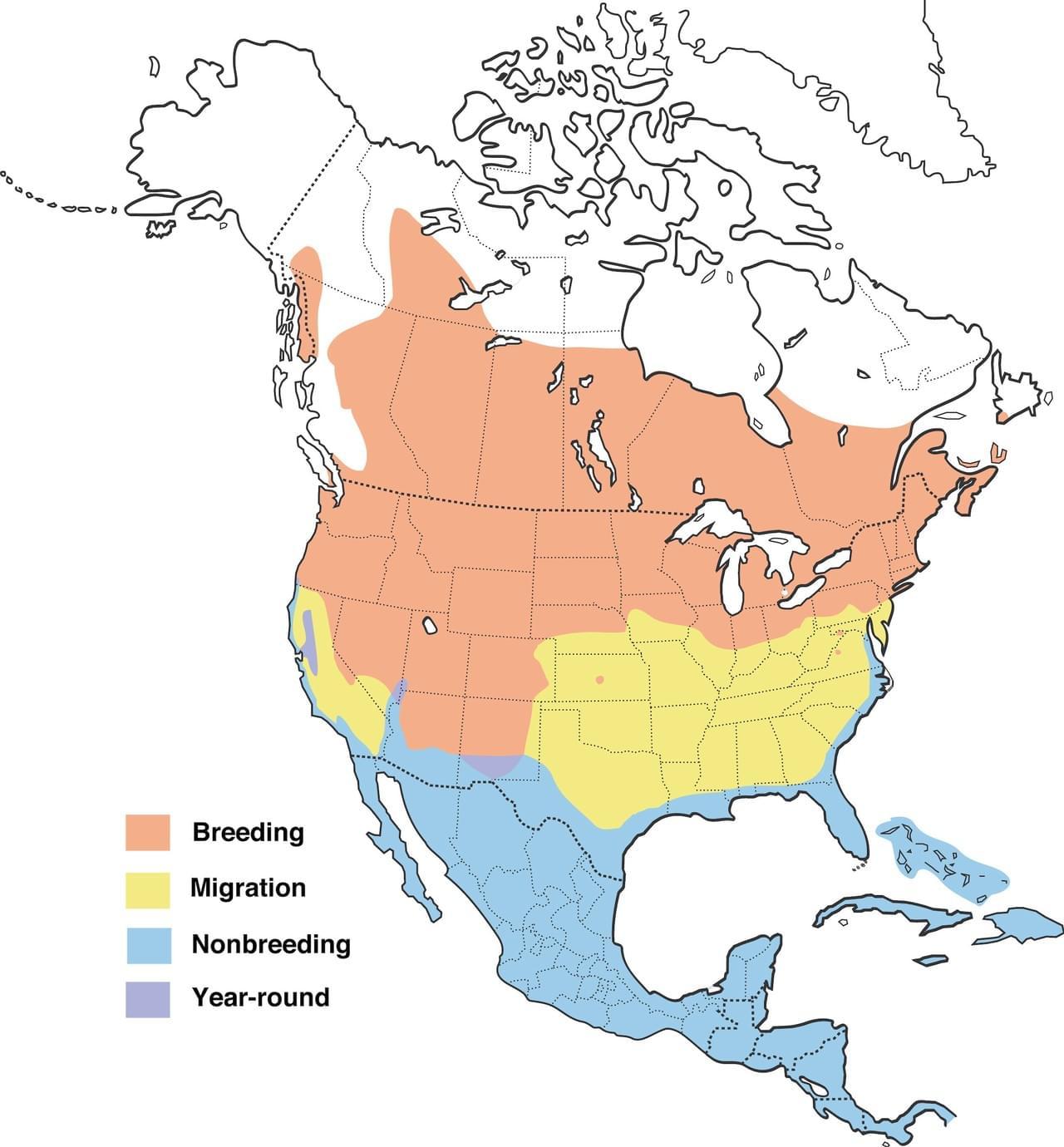 Range map provided by Cornell Lab of Ornithology