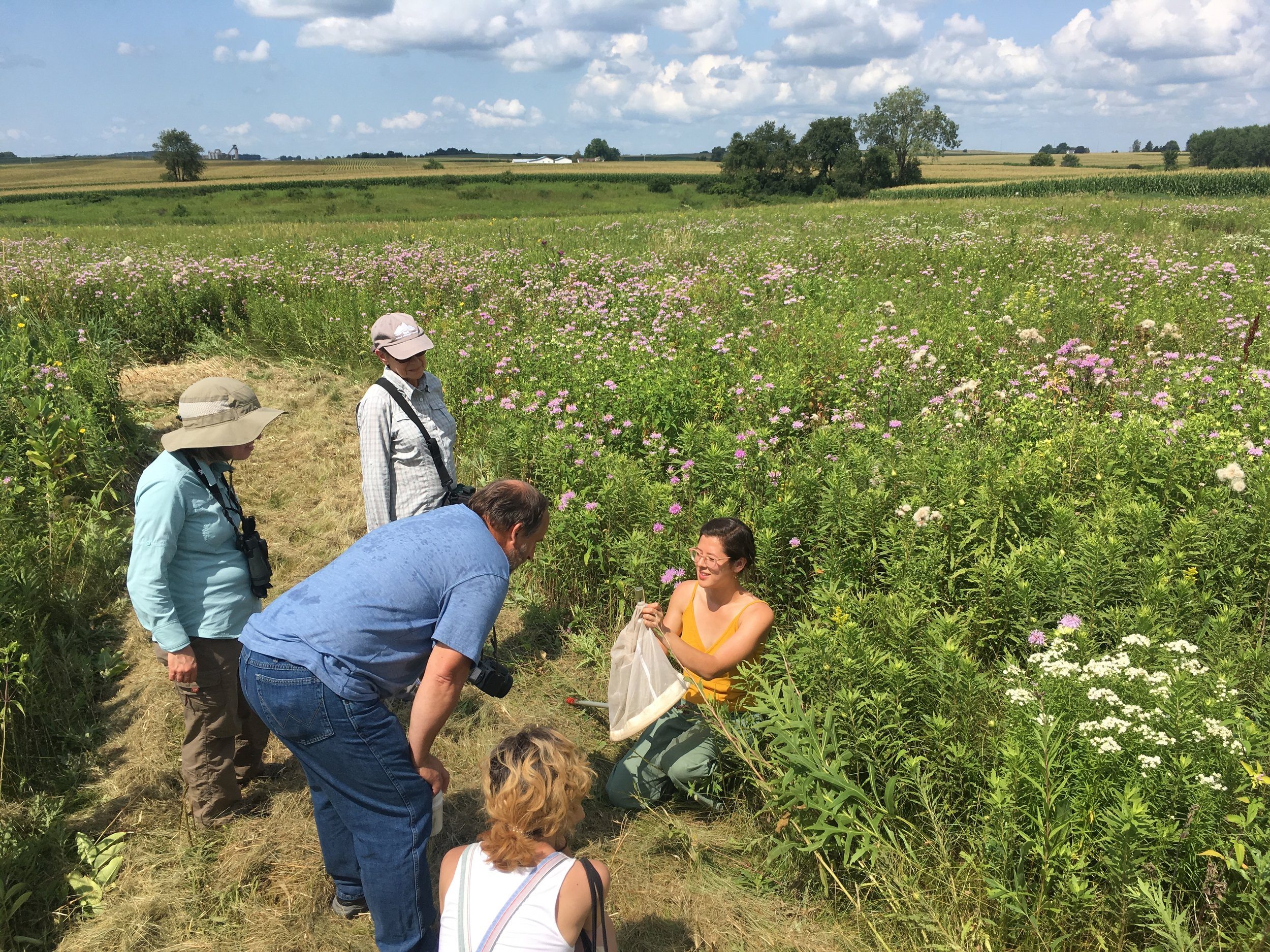 Participants of our August 3, 2019 bumble bee walk field trip at Goose Pond Sanctuary got to see first-hand the rusty-patched bumble bee! Photo by Graham Steinhauer