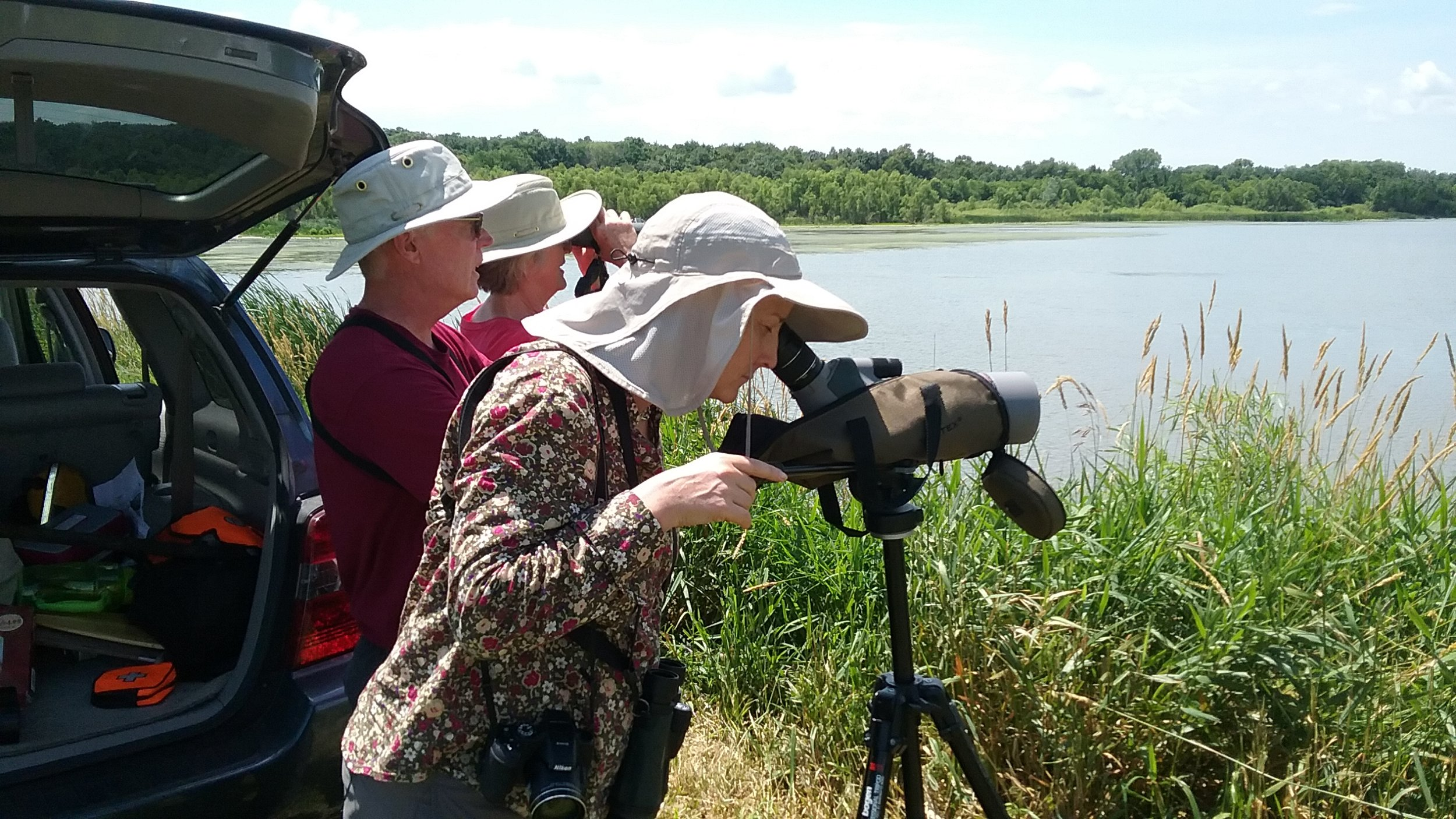 Brand Smith, Dory Owen, Sharon Weisenberger viewing the first sightings of black-necked stilt chicks in Columbia County. Photo by Mark Martin