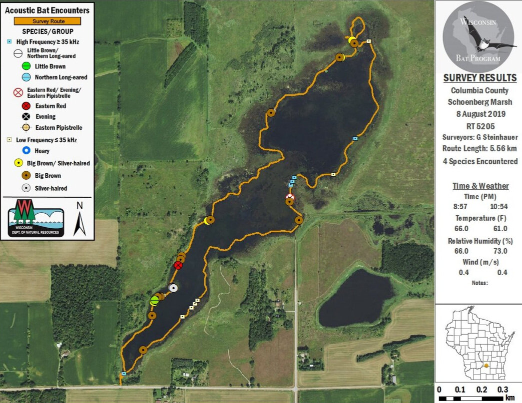 Results of the same survey done in 2019. Map by WDNR Bat Program