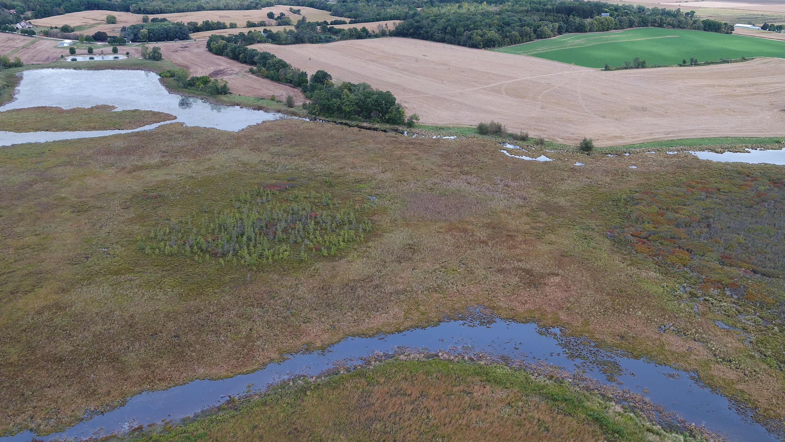 "Wetland ""moat"" at Faville marsh. Narrow areas of water are likely due to erosion. Native vegetation will replace agricultural field and hold the soil in place in the far upper left of this photo, credit Rob Couey"