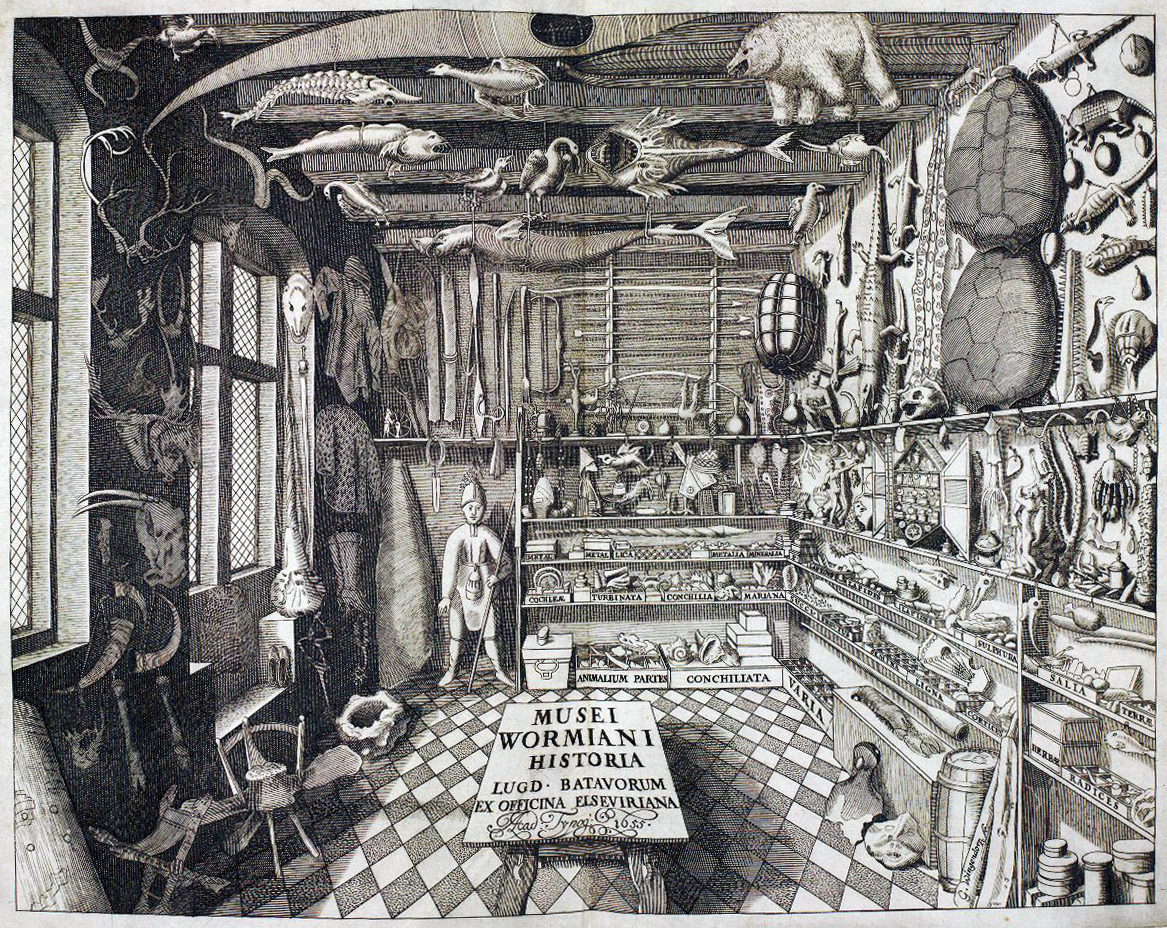 Musei Wormiani Historia, or Ole Worm's Museum, 1655.  A Danish physician and professor of classics, physics and medicine, Worm assembled this collection to inform his work in natural philosophy at the University of Copenhagen.